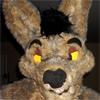 mortonfox: (coyote2)