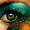 koronaphoenix: (peacock eye)