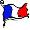 sewcute: (French Flag)