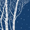 sylvertongue: A drawing of two silver birch trees with branches bare, on a background of dark blue. Snow is falling. (Winter trees)