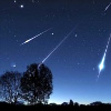 susanreads: silhouettes of trees against a night sky with meteors (meteors)