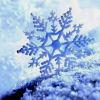 reiu: (snowflake)