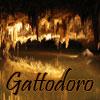 slash_cave: (Gattodoro)