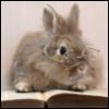 ysadailies: (book bunny)