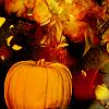 pensnest: pumpkin and other veg in autumnal colours (Pumpkin)