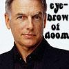 phantisma: (Gibbs eyebrow)