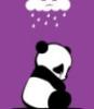 lexxiescott: (sad panda)
