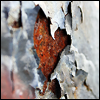 abandoned: Pic of flaking paint over rusted metal (Default)