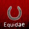 equidae: (Equidae)