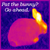 silveraspen: infrared picture of a rabbit (milliways: demon bunny)