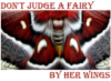 "anthimeria: Close up of cecropia moth wings, the words ""Don't judge a fairy by her wings"" (Fairy wings)"
