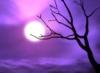 purplesky: ()