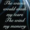 "pameladlloyd: ""The waves would wash my tears / The wind my memory,"" lyrics sung by Loreena McKennit (tears and memory)"