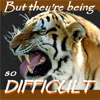 "aureantes: Tiger snarling ""But they're being so /difficult!!"" (difficult)"