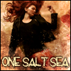 alexseanchai: Cover of Seanan McGuire's One Salt Sea (Toby Daye One Salt Sea cover)