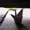telltale_commas: (Crane)