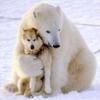 faustaufsaug: (bear hug)