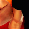 paian: Close-up of Daniel's elbow touching Jack's arm (jd arms by me)