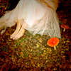 darwin: A girl, wearing a gauzy white dress, sitting outside with two red toadstools next to her. (Of faerie.)