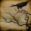nightmachinery: A crow in a twisted, leafless tree, cawing against a clouded amber sky. (Gen - Cawing Crow)