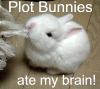 tormentedeyes: (the plotbunnies! they're EVIL)