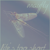 mayfly: mayfly: life's too short (Default)