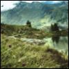 modern_fae: (landscape)