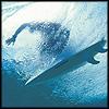 kaelie: (surferunder)