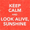cinco: sunshine