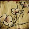 jjtaylor: (Dancing Flower)