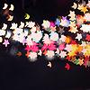 and the coast comes like a raft of warm air: random - star lights
