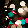 fulminata: (random - holiday lights)