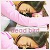 tempestuous: (Dead Bird)