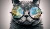 dredmorbius: Kosmik Kat (kosmik-kat)