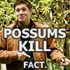 yourlibrarian: PossumsKill-carnageincminor (SPN-PossumsKill-carnageincminor)