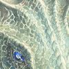 fuckyeahmaths: (close-up)