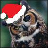 jennaria: Great Horned Owl wearing a Santa hat (Christmastide)