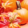 mickeym: (autumn leaves and pumpkins)