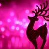 quillori: reindeer silhouette (Xmas: deer)