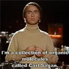 thez: The beauty of a living thing is not the atoms that go into it, but the way those atoms are put together. (Carl Sagan - Carl is made of starstuff!)