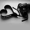 shutterbugs: (Canon Love)