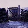 thedisappearingcat: (gate)