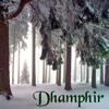 dhamphir: (winter trees)