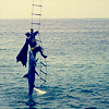 beachlass: batman hanging from a ladder, shark attached (shark)
