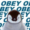 andrewducker: (obey the penguin)