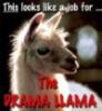 andrewducker: (drama llama)
