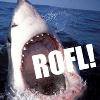 andrewducker: (shark rofl)