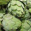 adonnchaid: artichoke (Default)