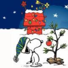vamysteryfan: (snoopy christmas)