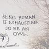 stripedtabby: (Random: Owls are Better)